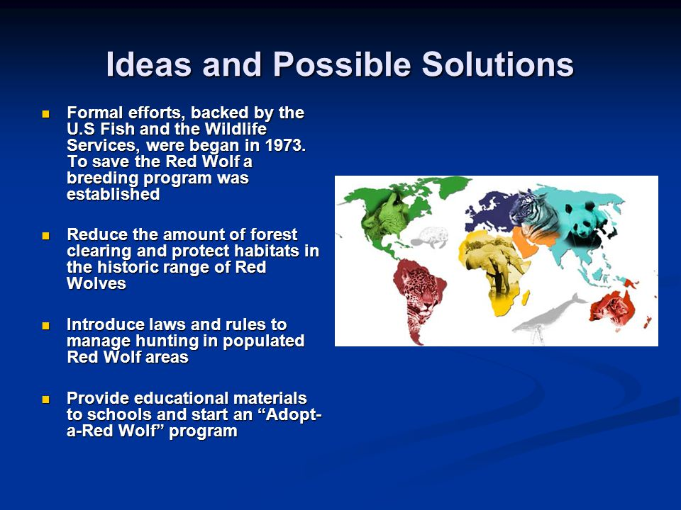 Ideas and Possible Solutions