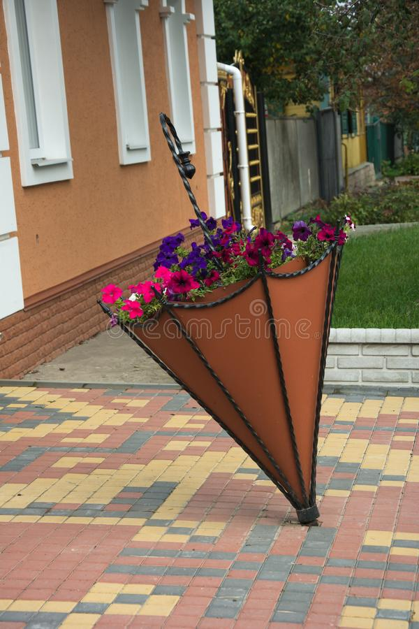 Flowerbed umbrella, flowerbed shaped like umbrella. Flowerbed like umbrella, Flowerbed of unusual shape royalty free stock image