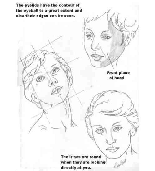 wetcanvas-anatomy-less2 The Best Drawing Tutorials to Learn How To Draw