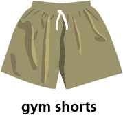illustration of a pair of gym shorts